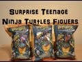 Teenage Mutant Ninja Turtles Surprise Packs Awsome Toys Unboxing (HD)