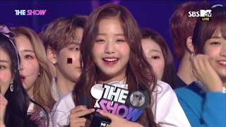 IZ*ONE, 1st WIN of THE SHOW [THE SHOW 181113]