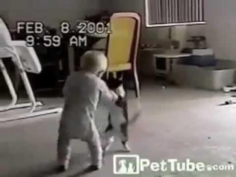 Kedi ile Bebeğin Güreşi http://www.vidsbook.com/komik