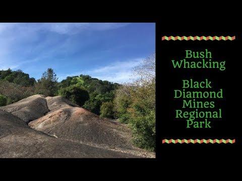 Bush whacking down Black Diamond Mines