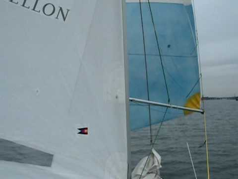 Hrbor Trip Skipper of the Month Flies Spinnaker