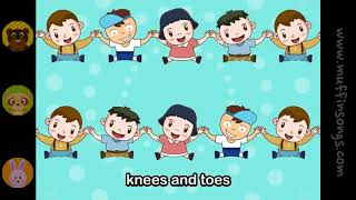 Muffin Songs   Head Shoulders Knees and Toes  nursery rhymes & children songs with lyrics  muffin