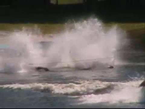 Cypress Gardens Water Ski Show Video