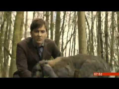 BBC Breakfast - Doctor Who:The Day of the Doctor