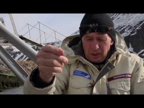 смотреть онлайн охота и рыбалка телеканал стрим