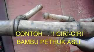 CONTOH . . !! CIRI-CIRI BAMBU PETHUK ASLI