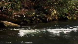FLY FISHING BROWNS NANTAHALA RIVER