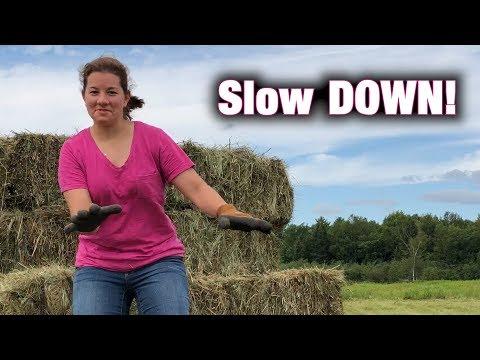 Slow DOWN | A Big Family Homestead VLOG
