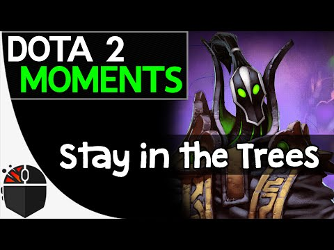 Dota 2 Moments  Stay in the Trees