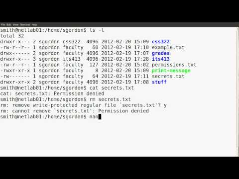 Basic Linux permissions part 2: Examples