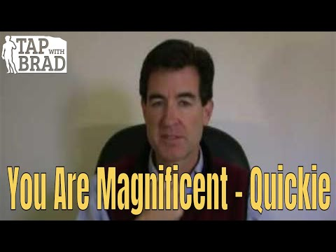 You are Magnificent - short version - EFT with Brad Yates