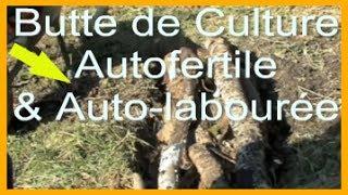 Butte de Culture Autofertile avec du bois (\
