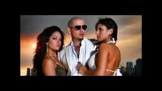 Watch Pitbull Shake Senorita Ft Tpain video
