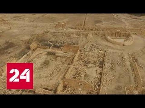 Сирийские войска оставили Пальмиру под натиском боевиков ИГ