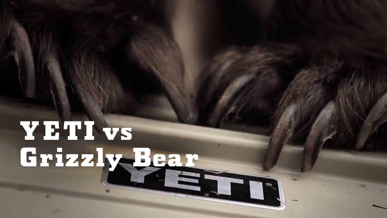 New YETI Coolers Grizz...
