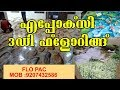 Epoxy Flooring Kerala / എപ്പോക്സി 3D ഫ്ളോറിങ് കേരളത്തിൽ തരംഗമാകുന്നുflo Pac , Vinod 9207432586