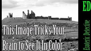 This Image Tricks Your Brain to See It In Color
