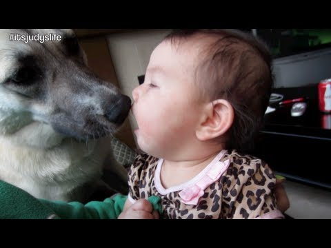 BABY LOVES DOG- April 14, 2013 ItsJudysLife Daily Vlog