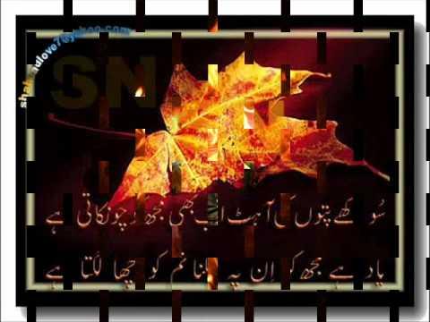 Shahzad14 Tu ne jo na kaha mein wo sunta raha shahzad.wmv