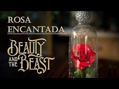 Rosa Encantada de Beauty and The Beast o La Bella y la Bestia