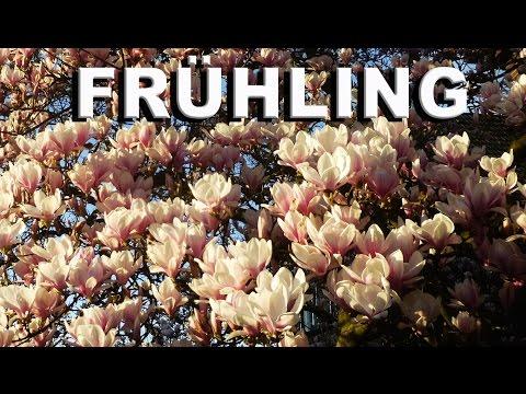 Frühling in Düsseldorf