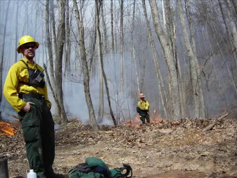 Va. wildfires burn more than 7000 acres - Worldnews.