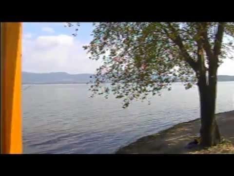 ��ено� во живо на ма�а�оно� во дале�ин�ко плива�е во �о��ан. �леда��е на http://dobrastrana.mk.