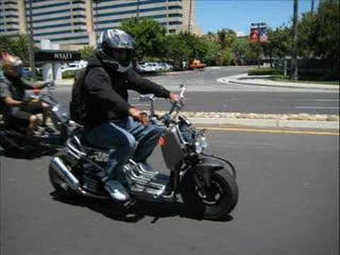 Honda Ruckus NorCal ride Video
