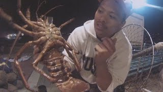 How to catch Lobsters!!! ( San Diego )