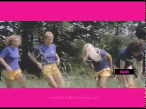 Bark Bark Disco - Song For The Lovers