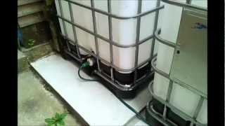 IBC Water harvesting system for drip feed irrigation system