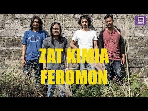 download lagu Zat Kimia - Feromon gratis