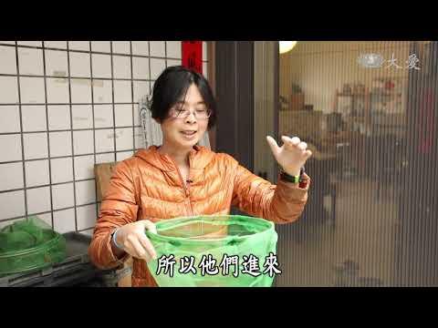 台綜-農夫與他的田-20190402 科學加農業