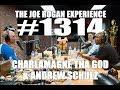 Joe Rogan Experience #1314   Charlamagne Tha God & Andrew Schulz