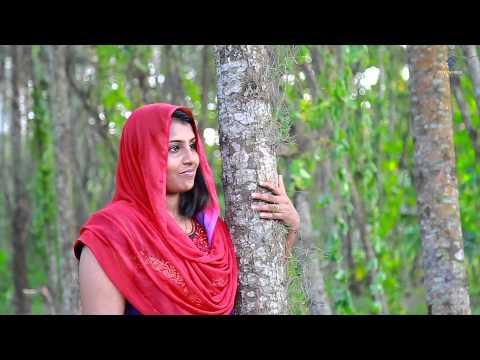 Kerala  Wedding Highlight Shahina + Shamnad,