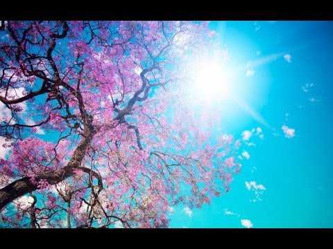 Beautiful Relaxing Spring Lounge Cafe Del Mar Chill Out Mix 2013 HD