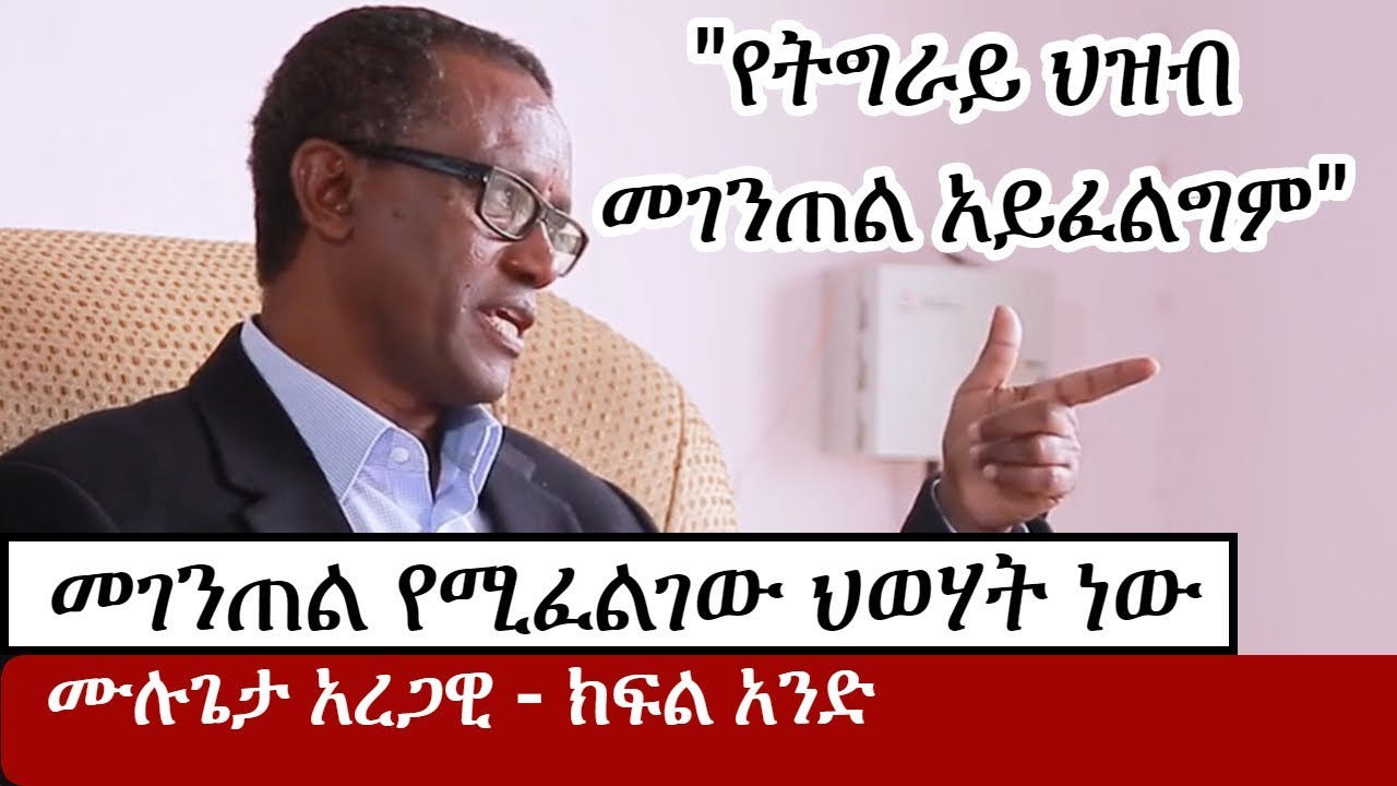 Interview with Ato Mulugeta Aregawi
