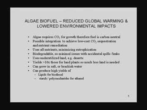 Biofuels: Creating Greener Energy