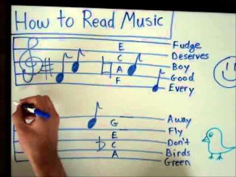 How to Read Music - Basics for Beginners - Music Theory Lesson