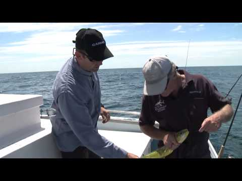 HOOKED S7 EP08 Sydney Reef Fishing Jewfish