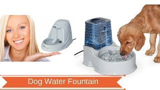 Best Dog Water Fountains-Top Water Fountains For Dog