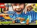 LEGO CITY ARCTIC AIR TRANSPORT and a GECKO!