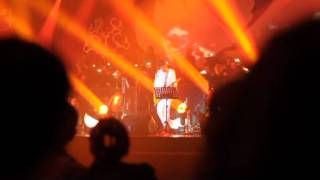 download lagu Cobalah Mengerti - New Peterpan Feat. Momo Geisha gratis
