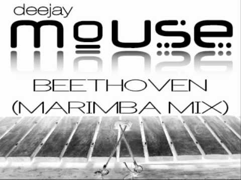 DJ  Mouse - Beethoven (Marimba Mix 2011)