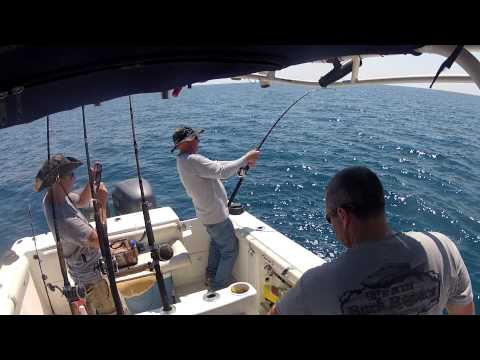 Jacksonville Deep Sea Fishing - Shark Fishing - 5-10-13