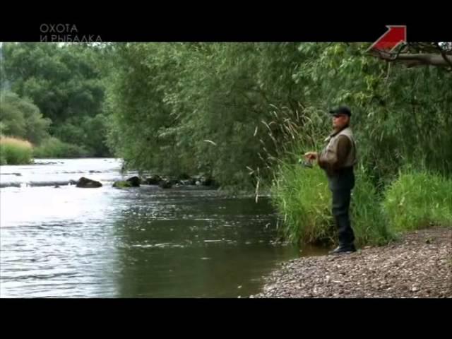 программа для начинающих рыболовов