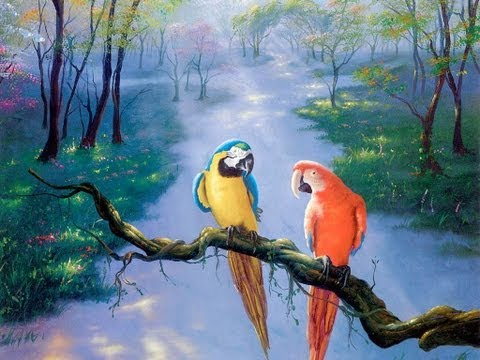 Parrots 3d Animation Malayalam Rhymes For Children With Lyrics video