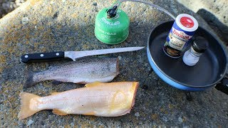 Golden Trout vs. Rainbow Trout Catch n' Cook Taste Test!