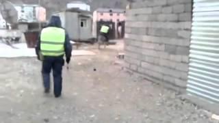 Осел похитил гаишника. Donkey stole the traffic inspector