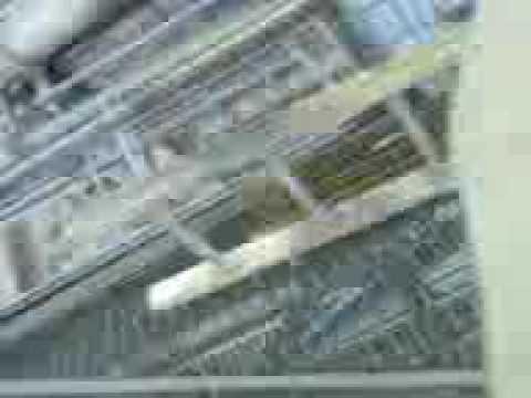 anglo chile- planta las tortolas 1